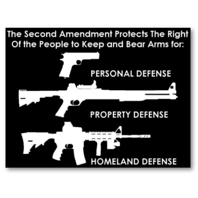 the_second_amendment_protects_poster