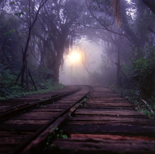 melancholy tracks