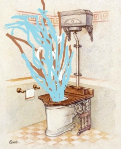 vintage toilet geyser