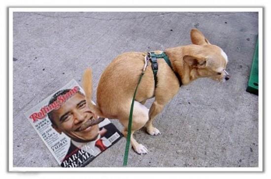 dog-poop-obama