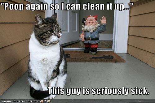 clean poop