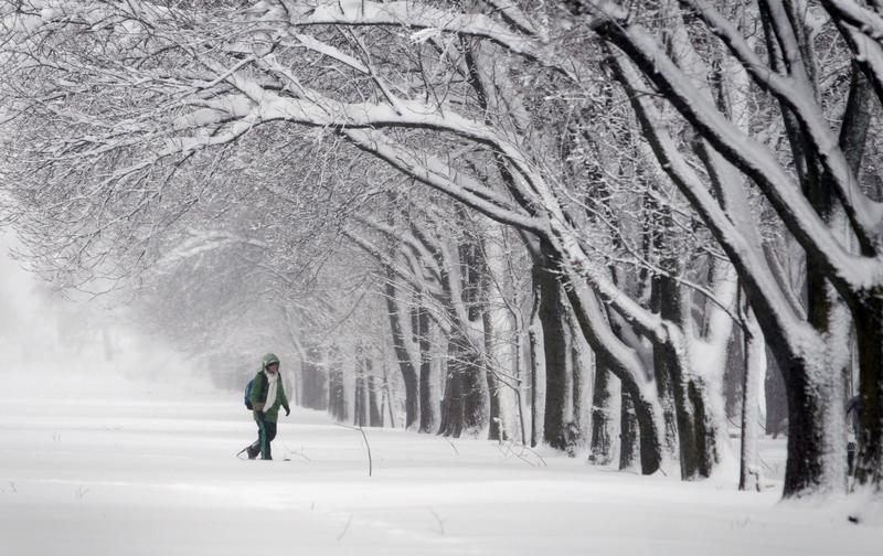 winter misery