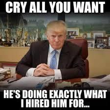trump no crybabies